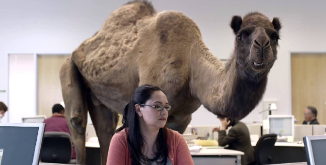 New Research, Sheds New Light on Hump Day